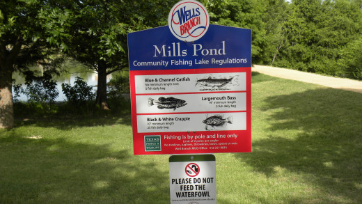 Fishing at Mills Pond Austin TX
