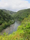 A Day in Arashiyama, Japan