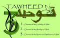 Introduction to the Categories of Tawheed