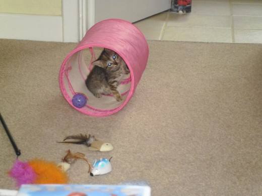 Jess playing in the tunnel