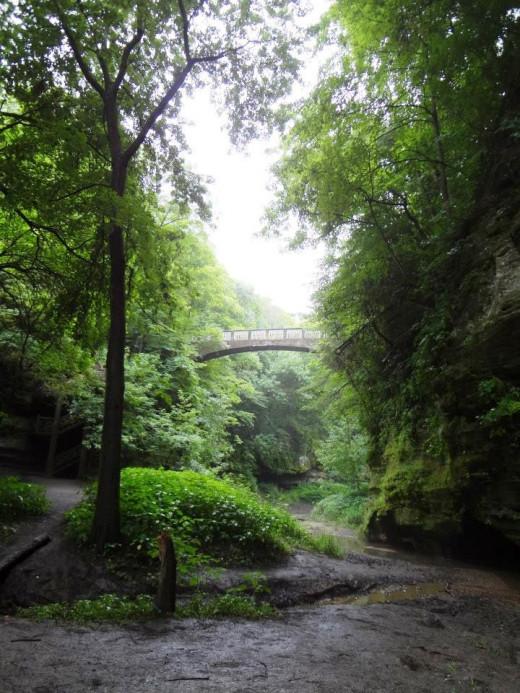 Footbridge in the upper dells area