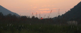 Sunset at Tiger Reserve