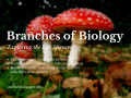 Branches of Biology: Exploring Fields in Biology