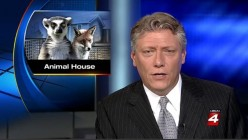 Exotic Pet Stories in the News | Laughable Mistaken Identities