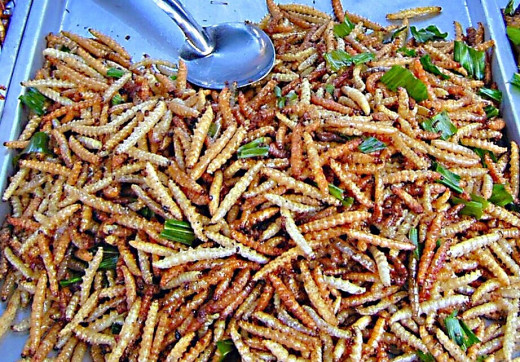 Deep fried bamboo worms, which are the larval form of a moth called the bamboo borer