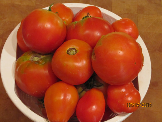 Tomatoes - will be delicious frozen as tomatoes and okra.