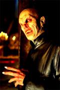 Vampire: A History Through Pop Culture