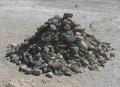 Stoning Women Increases