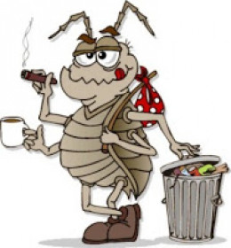 I couldn't bare to put a real picture of a real roach on here..that's how much they disgust me!