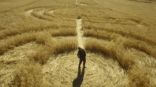 Crop circles , which are believed to be caused by UFOs , cause a great deal of damage to the crops.