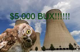 Need a Power Plant? How about This Here State of the Art Nuclear Power Plant for Just $5,000? Would You Want to Live near a Nuclear Power Plant That Costs 5,000 Bucks? I'de Run the Crap Away!