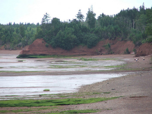 Low tide on the Bay of Fundy. The Bay features the world's highest tides and some parts of the trails are only accessible at low tide.