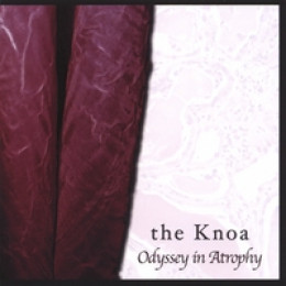The Knoa: Odyssey in Atrophy