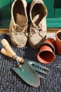 Gardening for Procrastinators