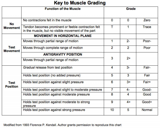 This is a scale for grading manual muscle testing results.