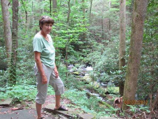 Hiking to Anna Ruby Falls