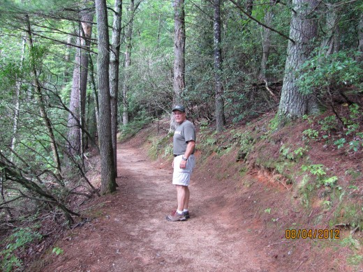 On the way to Anna Ruby Falls - a short hike and worth the effort!