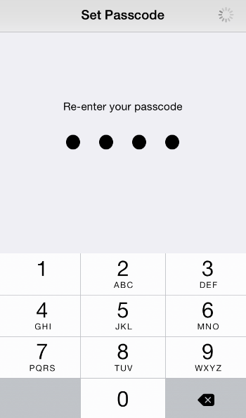Use the iPhone pass code to secure it against theft