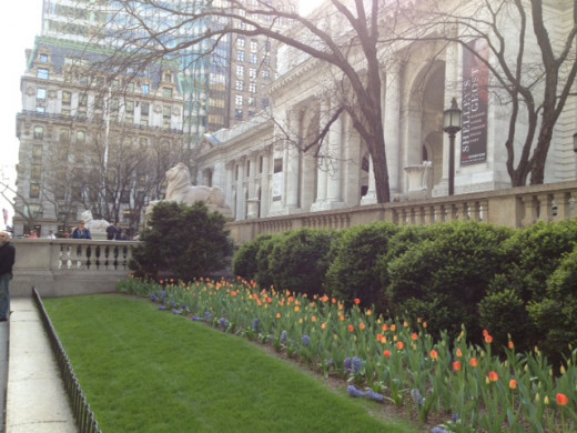 Early Spring Outside NY Public Library