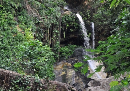Ikogosi Waterfall Resort