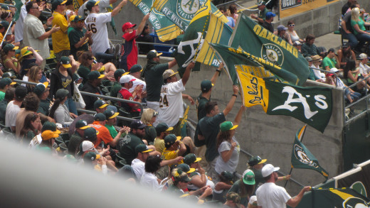 The crazy, yet wonderful, fans of Oakland.