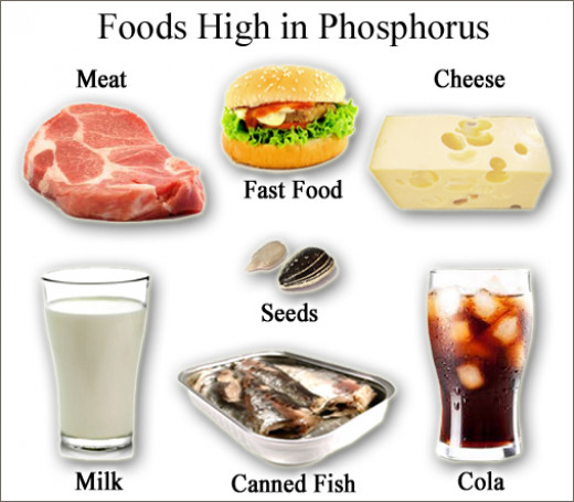 Low Phosphorus Hifh Calcium Food