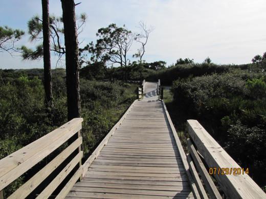 The Boardwalk Between Gulf Breeze and Shady Pines - Cape San Blas, FL