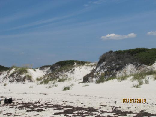 Sand Dunes at St. Joseph Peninsula State Park