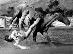 Thrown from a wild horse