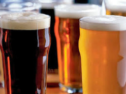 Should I Make My Own Beer?  Why Home Brewing Isn't Always the Way To Go