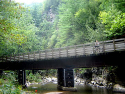The Creeper Trail, Damascus, VA is Perfect for All-Level Cyclists
