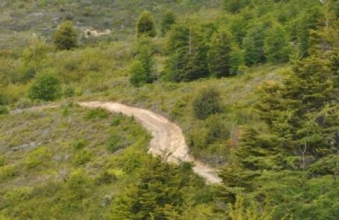 Dirt road on the hillside