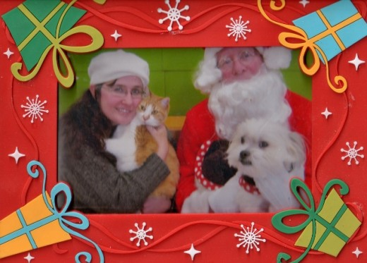 Setzer was pretty calm (for a cat, at least) to visit PetSmart to visit Santa Claus