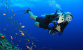 Scuba Diving Safety Tips for Beginners