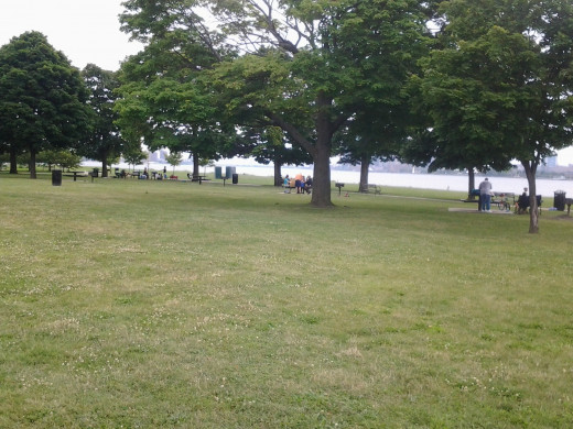 Families Enjoying a Picnic at Belle Isle in Detroit, Michigan on a Saturday Afternoon.