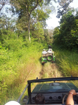 Open Jeep Safari