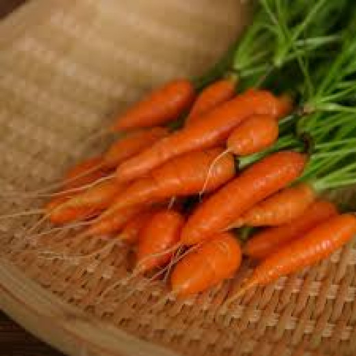 Carrots Aid Digestion