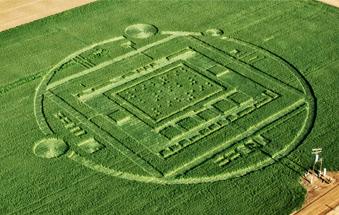 Salinas crop circle