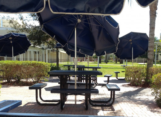 The greenery and natural space of outdoor dining is refreshing and can lessen stress.