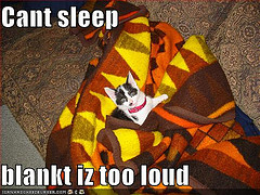 Because everybody loves cat pictures, especially insomniac cats.