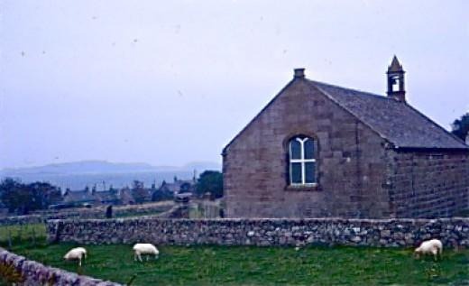 Sheep Safely Graze