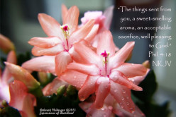 The Beauty and Fragrance of Godlike Character