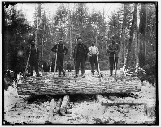 loggers in Michigan