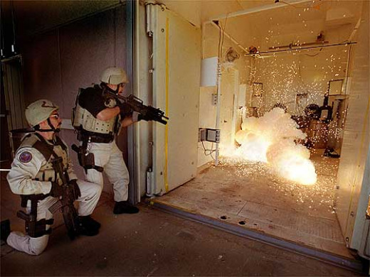 The explosion of a flash-bang stun grenade stuns an enemy by simultaneously blinding and deafening them for 5-10 seconds.