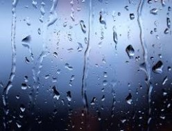 The color of rain-Senryu poetry