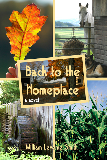 "Cover art of the first novel in ""The Homeplace Saga"" series"