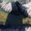 S T Alvyn profile image