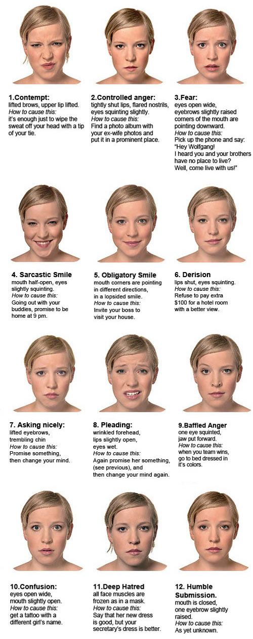 Opinion you facial expressiveness in cultures for explanation