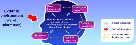 : Pictoral representation of the human motivational system according to PRIME (plans, responses, impulses, motives, evaluations) theory