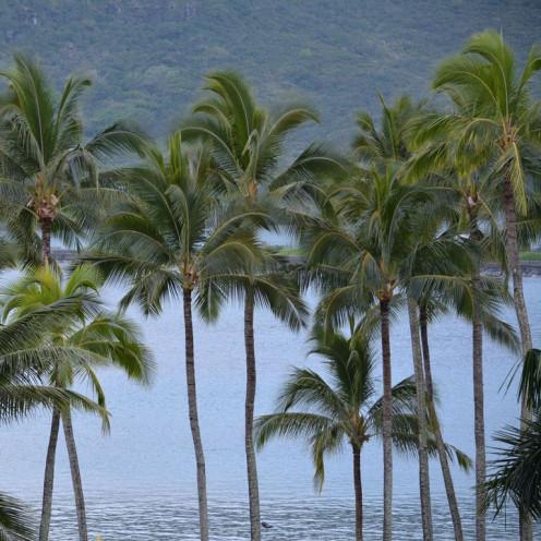 Kalapaki bay in Kauai, Hawaii